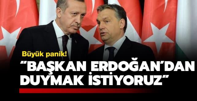 Büyük panik: Başkan Erdoğan'dan duymak istiyoruz!