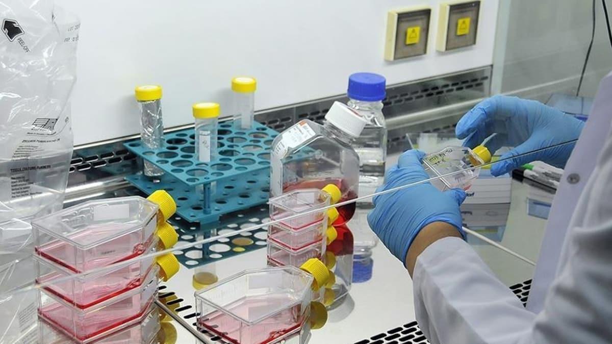 Bakan Koca: Çin'den gelen ilaç hastalara uygulanmaya başlandı, sonuçlarını göreceğiz