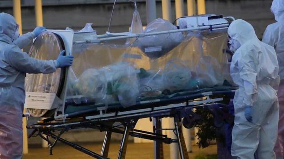 Fransa'da heyecanlandıran koronavirüs çalışması