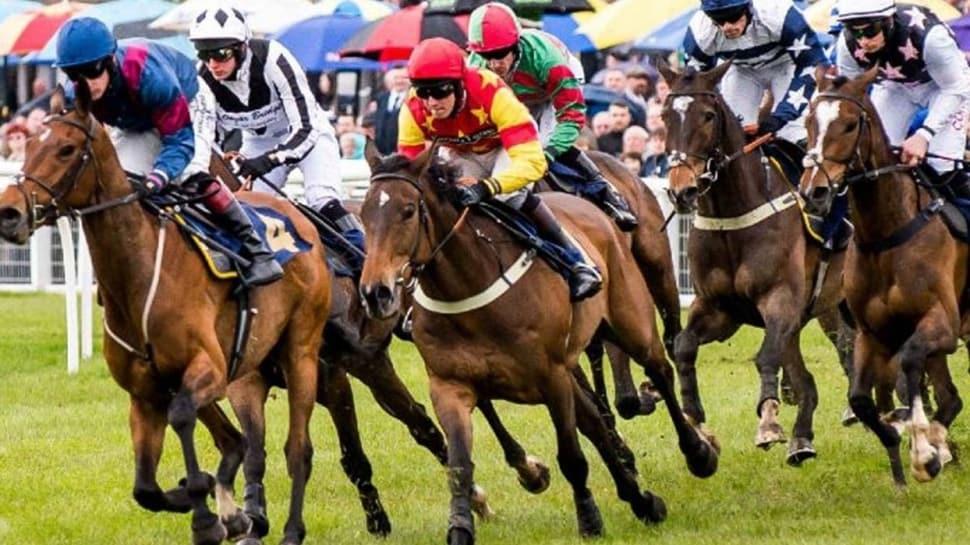 """At yarışları ne zaman başlayacak"""" Bakan Pakdemirli'den açıklama..."""