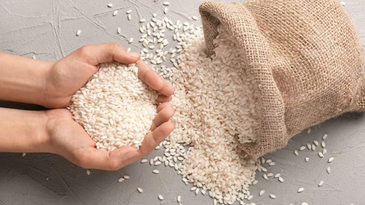 TMO pirinçten sonra çeltik de satacak