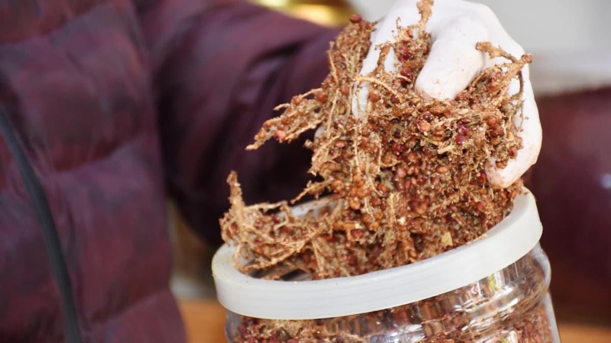 Koronavirüse iyi geldiği iddia edilen sumak için uzmanlar uyardı