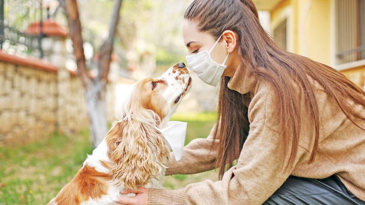 Virüs salgınlarında veterinerlere de iş düşüyor