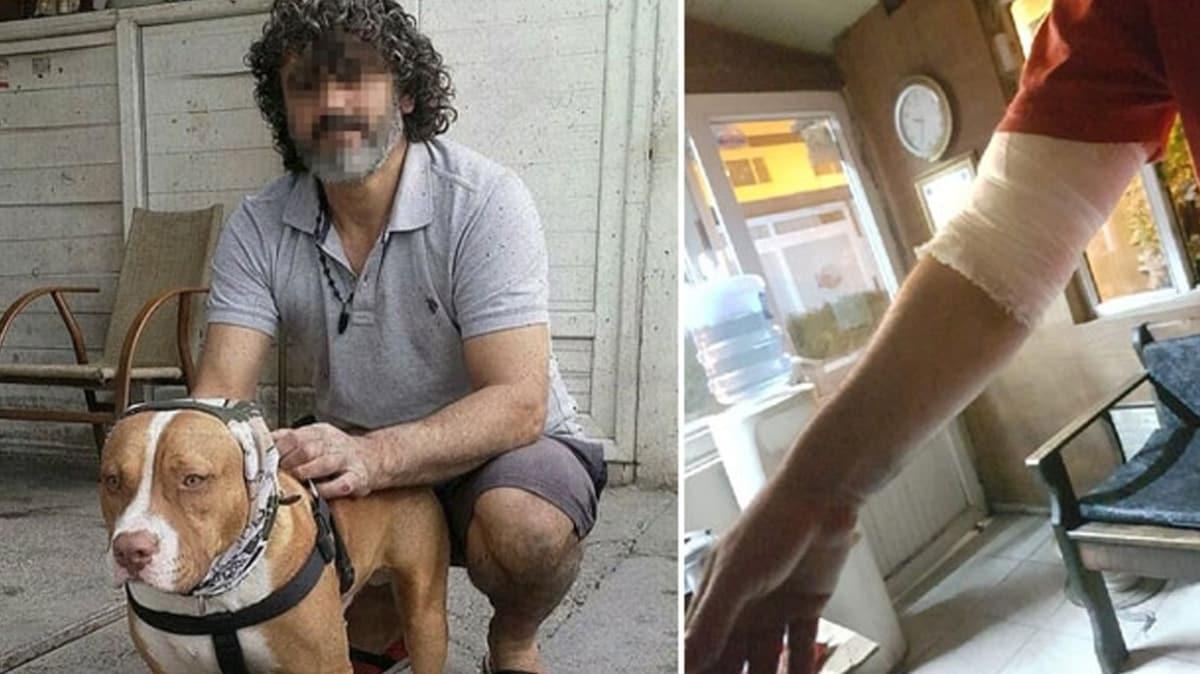 Adana'da dehşet! Kendilerine havlayan 2 köpeği ve sahibini bıçakladılar