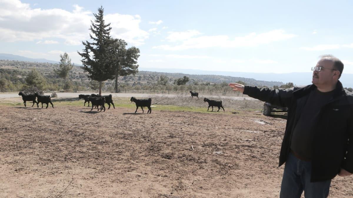 Mersin'deki göçer ve arıcılar 1 Mayıs itibariyle yaylalara çıkabilecekler