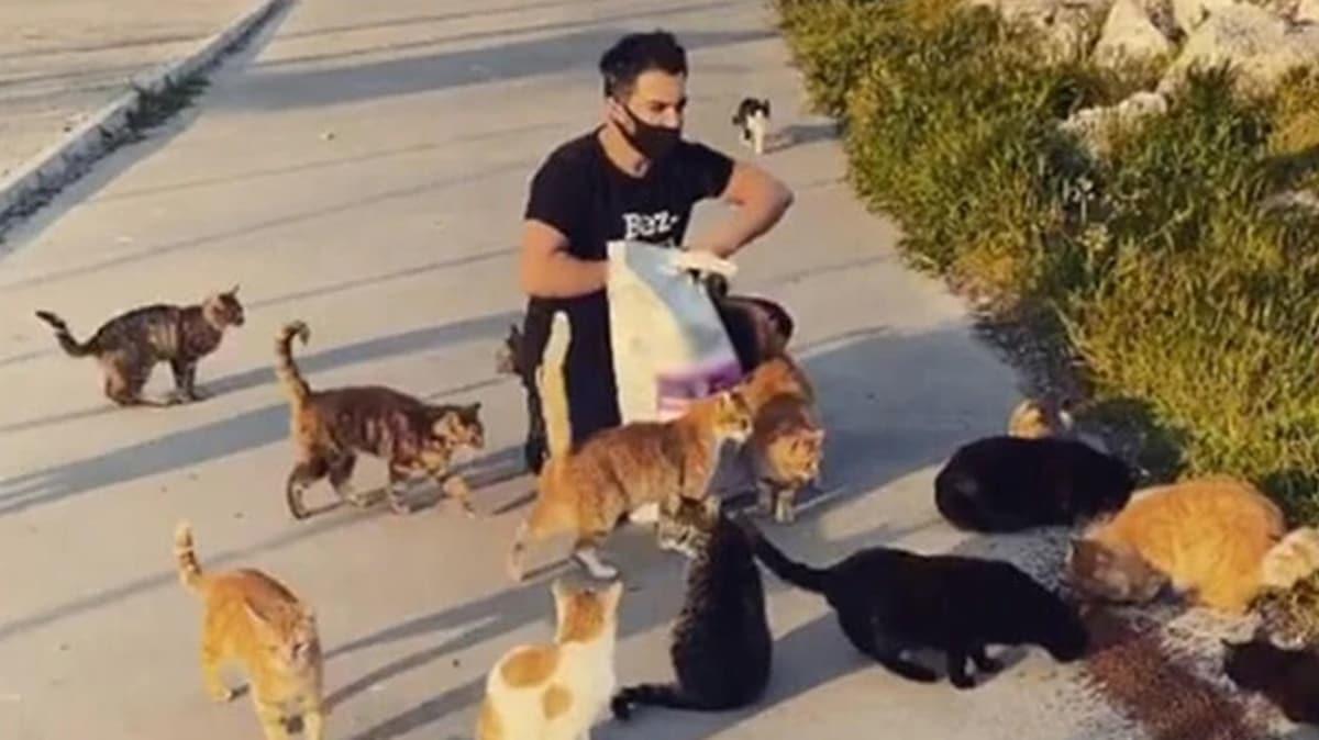 Yusuf Güney'den anlamlı hareket! Sokak hayvanlarını besledi