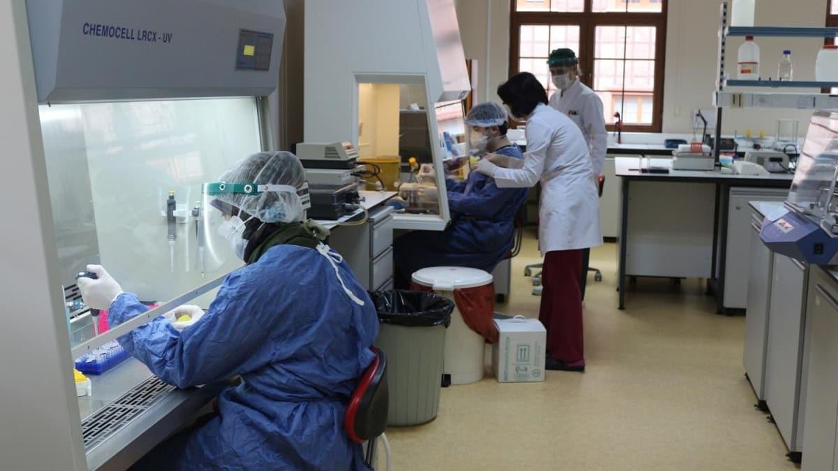 Koronavirüs vakaları azalan 2 kent için 'rehavet' uyarısı