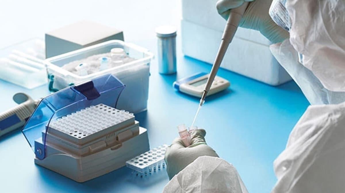 Bakanlık harekete geçti: Üşüttüm diyene koronavirüs testi