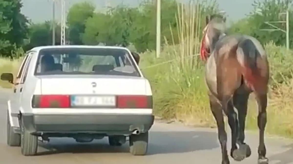 Tepki çeken görüntü! Otomobile bağladıkları atı metrelerce koşturdular