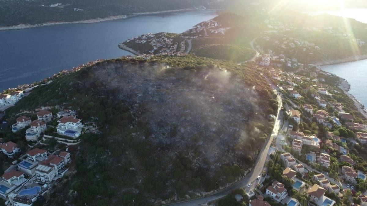 Kaş'taki yangının hasarı gün doğunca belli oldu