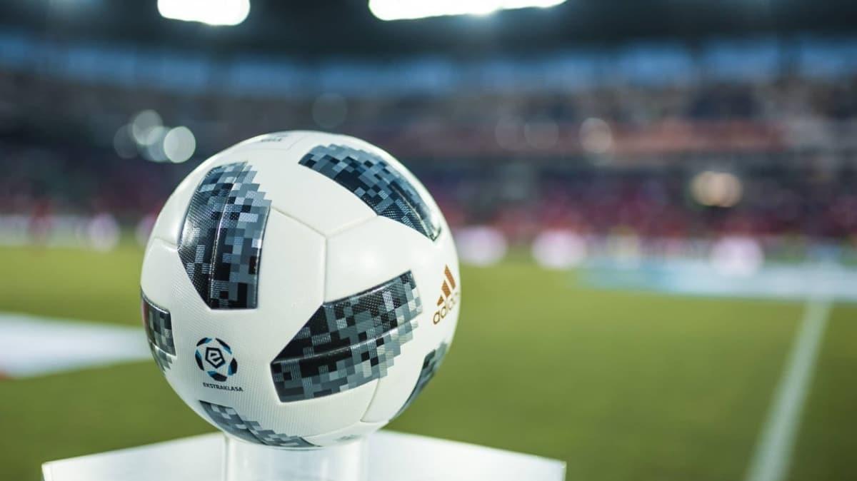 Polonya Futbol Federasyonu'ndan 'maçlar seyircili oynansın' talebi