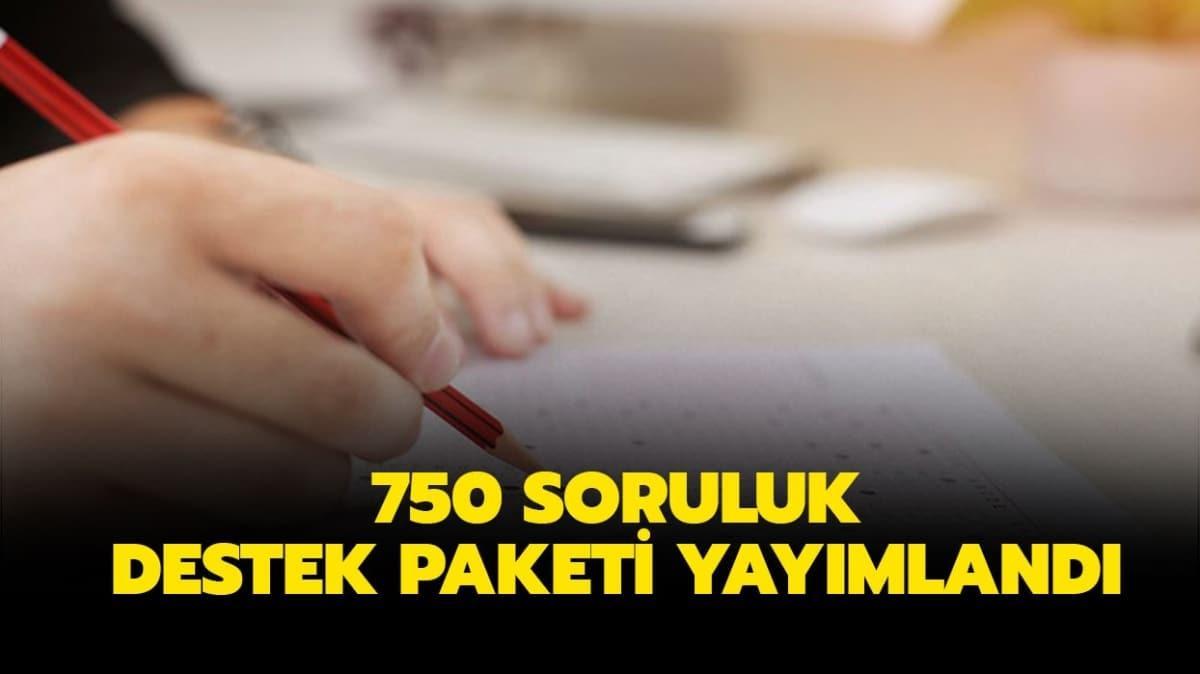 Lise 750 soruluk 4. destek paketi yayınlandı!