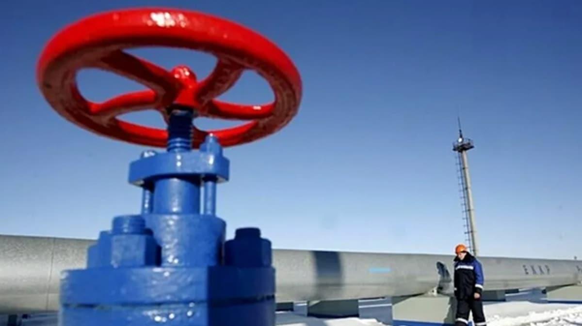 TürkAkım'dan doğal gaz akışına bakım çalışmaları için 6 gün ara verilecek