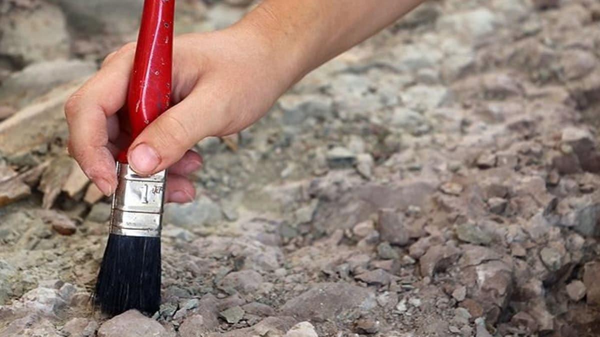 Japonya'da dünyanın en küçük dinozor yumurtası fosili bulundu