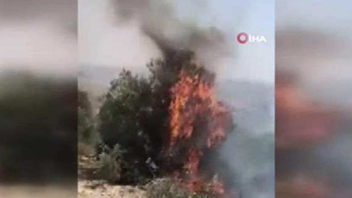 Yahudi yerleşimcilerin bitmeyen zulmü! Filistinlilerin arazilerini ateşe verdiler