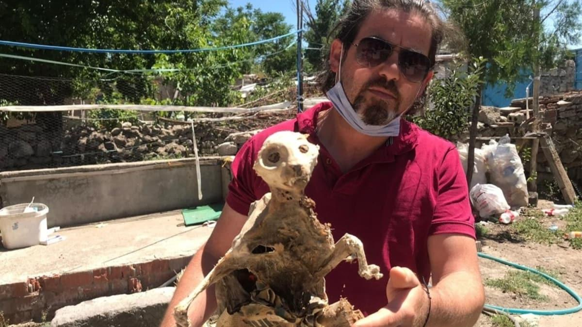 Odun toplarken bulduğu hayvan fosilini görünce gözlerine inanamadı