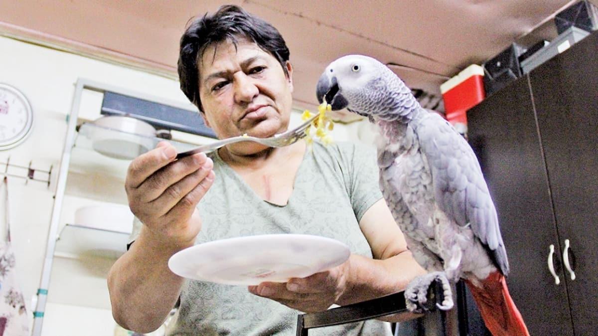 Kredi çekip papağan aldı