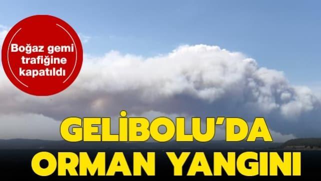 Çanakkale'de orman yangını... Havadan ve karadan müdahale ediliyor