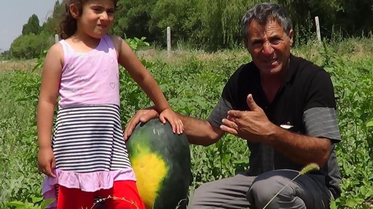 Iğdır'da karpuz yetiştiricisi Diyarbakır'a rakip oldu
