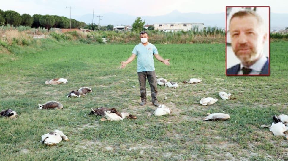 CHP'li başkan 40 kazı tüfekle katletti