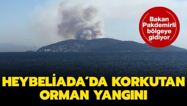 İstanbul Heybeliada'da orman yangını