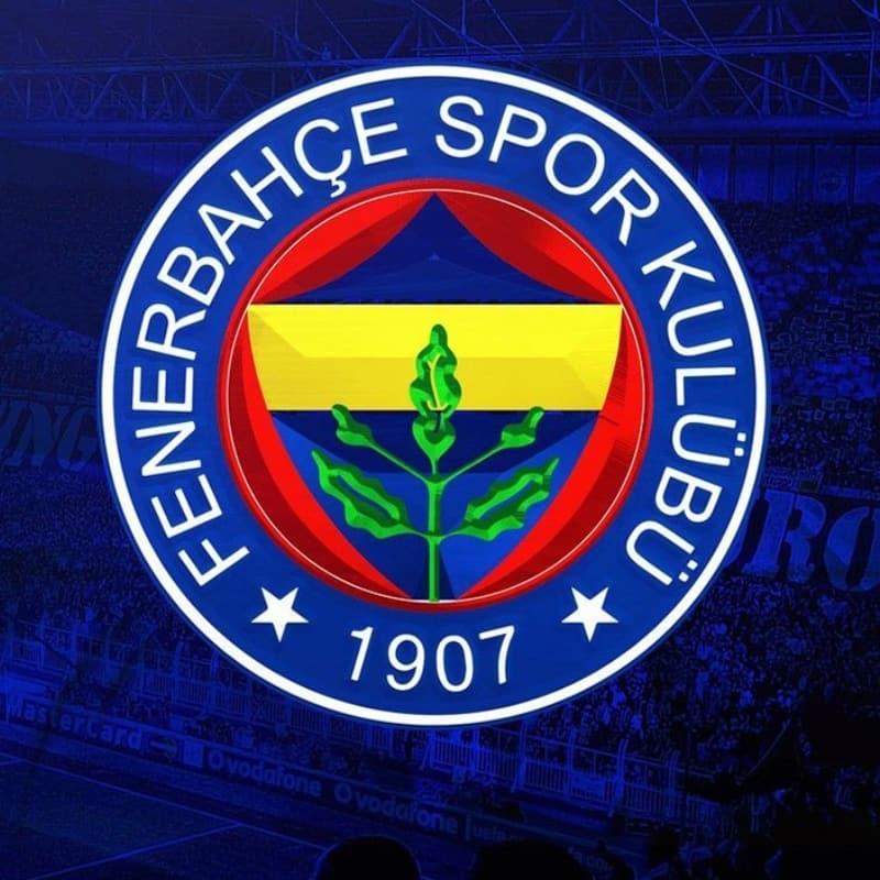 Fenerbahçe'dan bir transfer daha