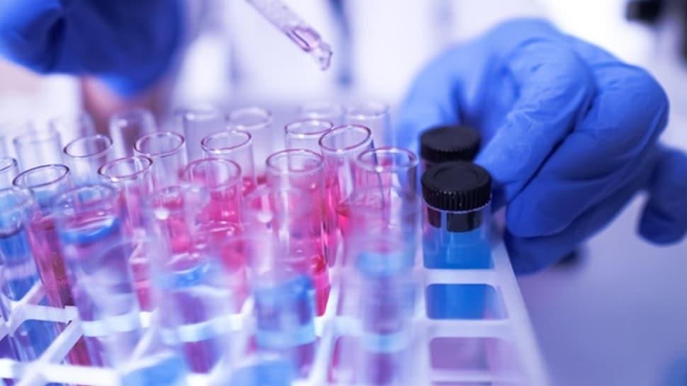 Singapurlu bilim insanları koronavirüse karşı bağışıklığın 20 yıl sürebileceğini iddia etti