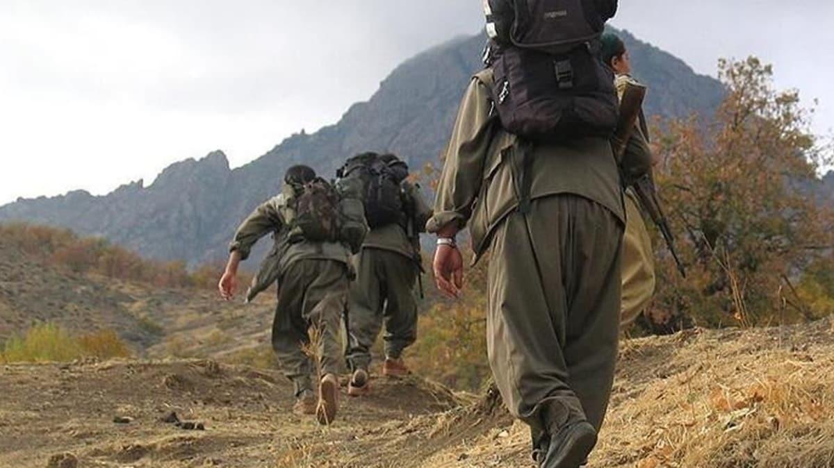 Zeytin Dalı bölgesinde 2 terörist gözaltına alındı
