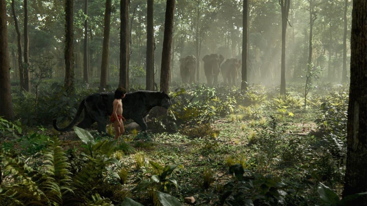 """Orman Çocuğu konusu nedir"""" Filmin oyuncu kadrosunda kimler var"""""""