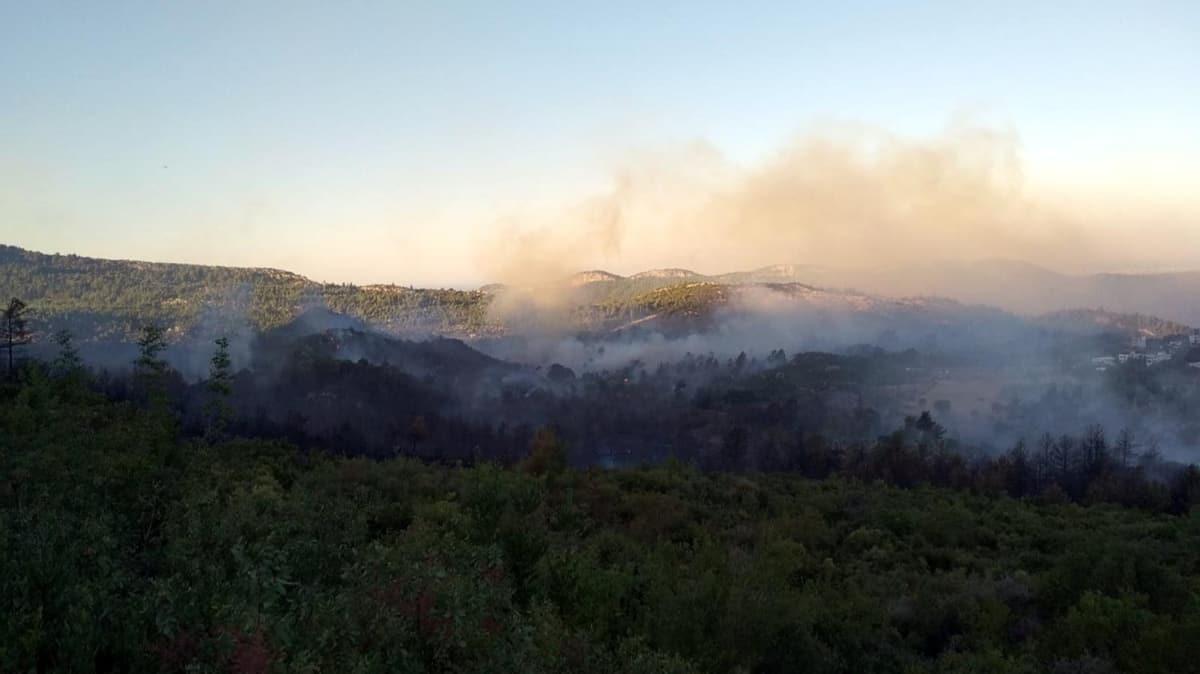 Antalya Manavgat'ta orman yangını meydana geldi