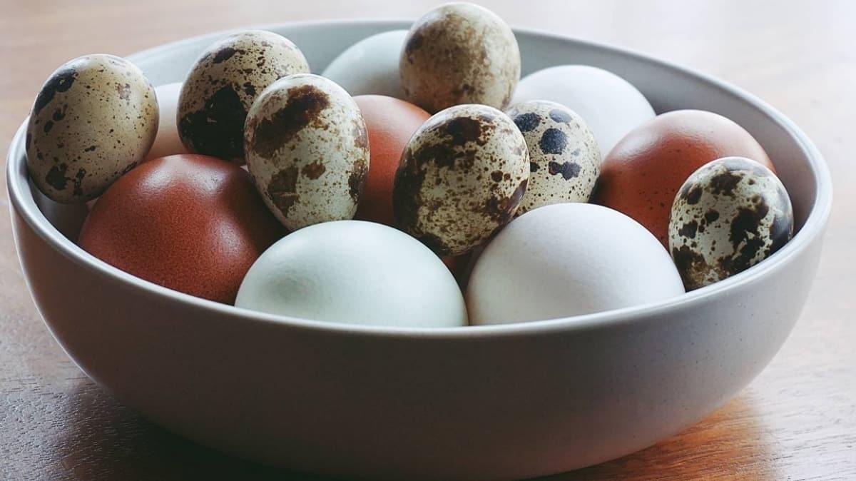 Bağışıklığa ve astıma birebir: Bıldırcın yumurtası!  Bıldırcın yumurtasının faydaları