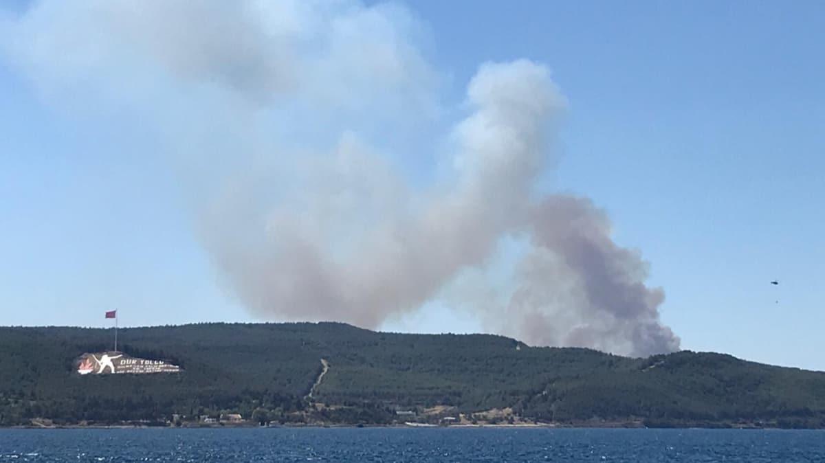 Çanakkale'de orman yangını! Boğaz çift yönlü trafiğe kapatıldı