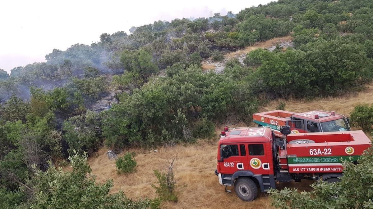 Diyarbakır Lice'deki yangın hakkında HDP'den algı operasyonu