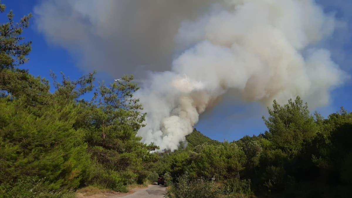 Manisa'da orman yangını... Ekipler müdahale ediyor!