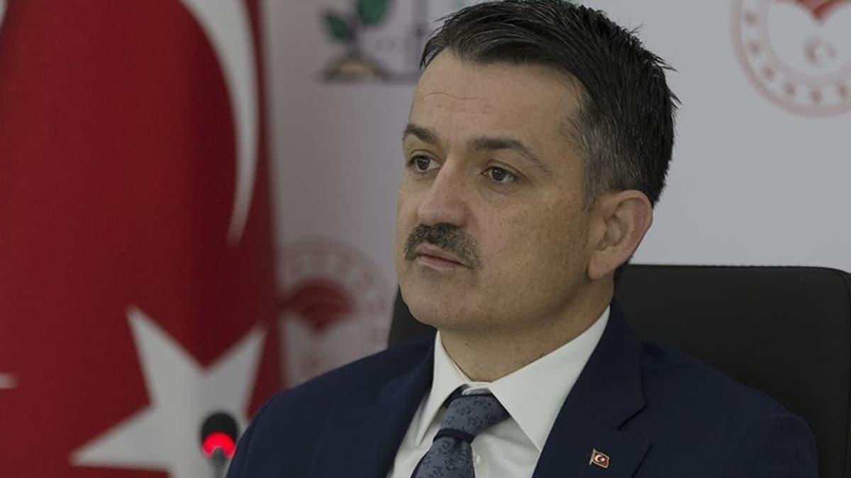 Bakan Pakdemirli: İzmir Menderes'te orman yangını kontrol altına alındı