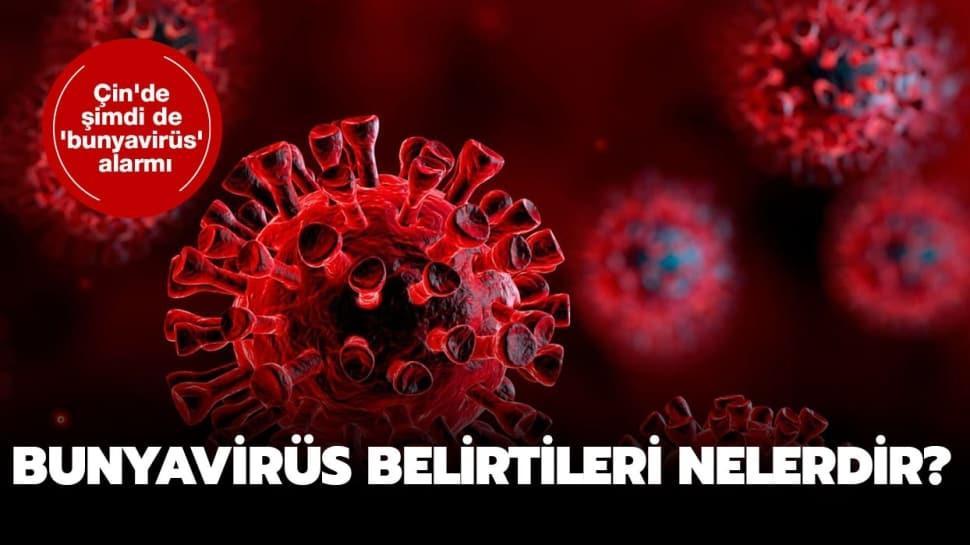 """Bunya virüsü nasıl bulaşır"""" Bunyavirüs nedir, belirtileri nelerdir"""""""