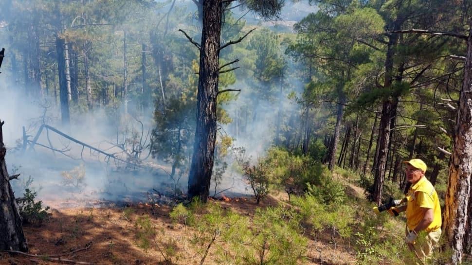 2 günde 6 orman yangını çıkmıştı... Nedeni belli oldu