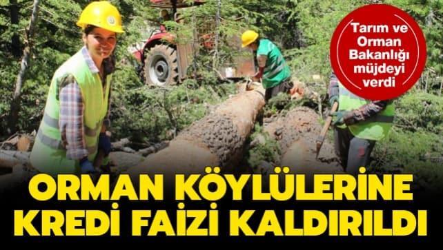 Tarım ve Orman Bakanlığı yeni desteğini duyurdu: Orman köylülerine faizsiz kredi