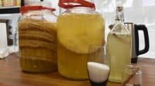 Bağışıklık ve karaciğer dostu: Kombucha çayı