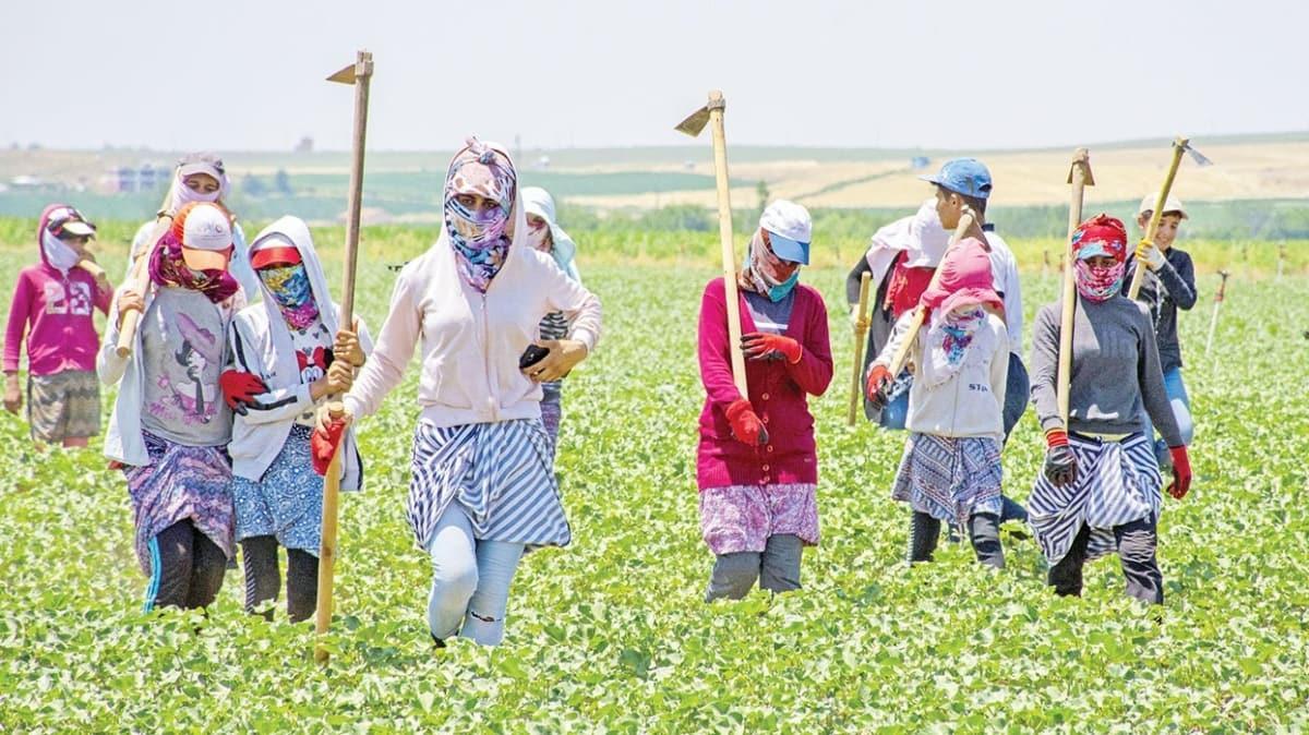 Destekler tarımı zirveye çıkardı