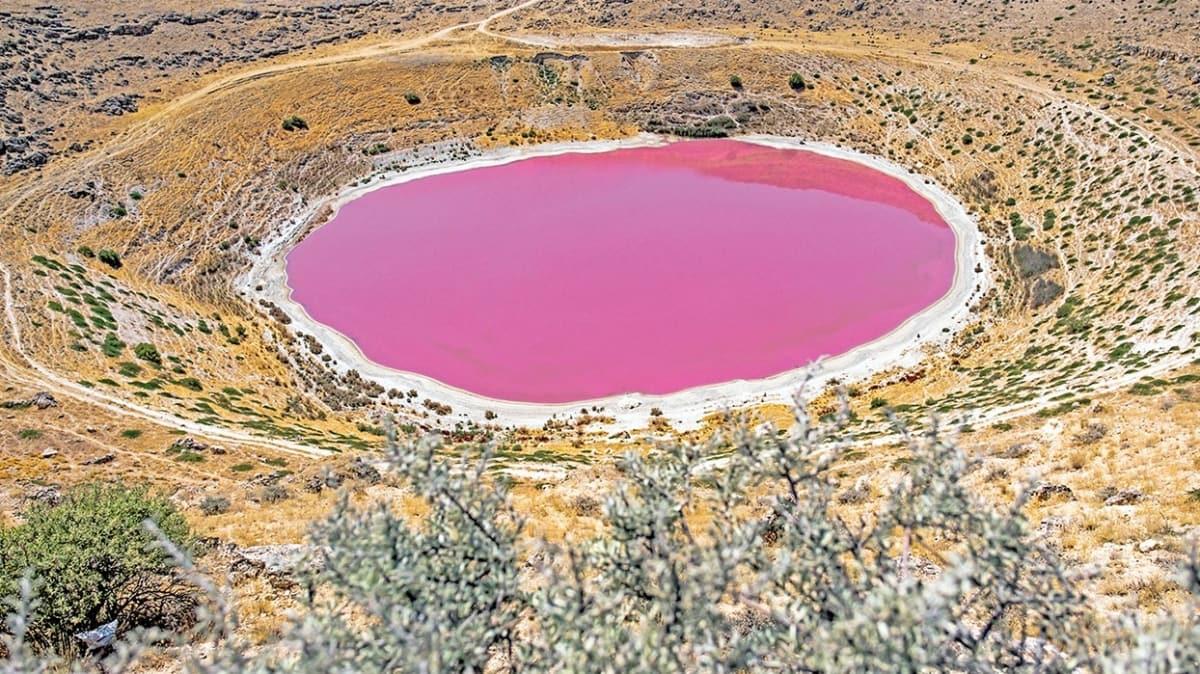 Bakteriler gölü pembeye boyadı