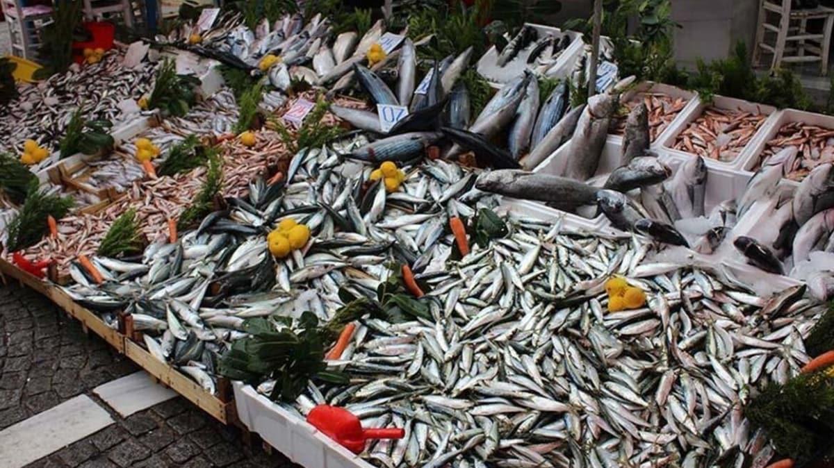 Su ürünleri avcılığı Akdeniz'de 15 Eylül, diğer denizlerimizde 1 Eylül'de başlayacak