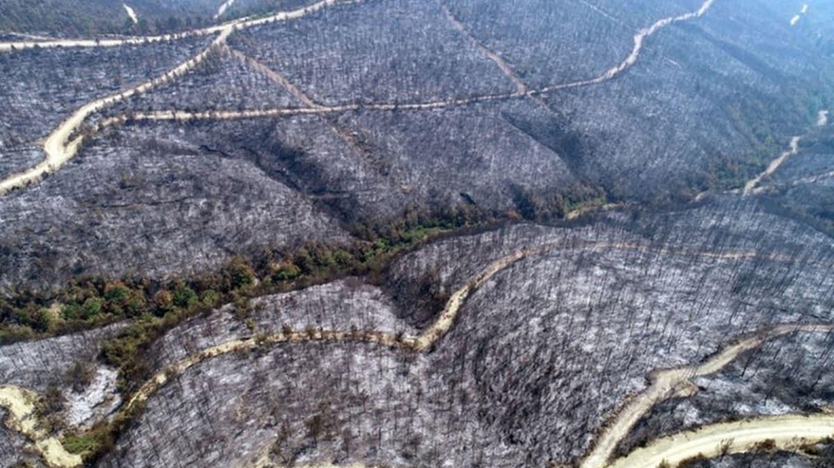 Kozan'da çıkan yangında 280 futbol sahası büyüklüğünde alan kül oldu
