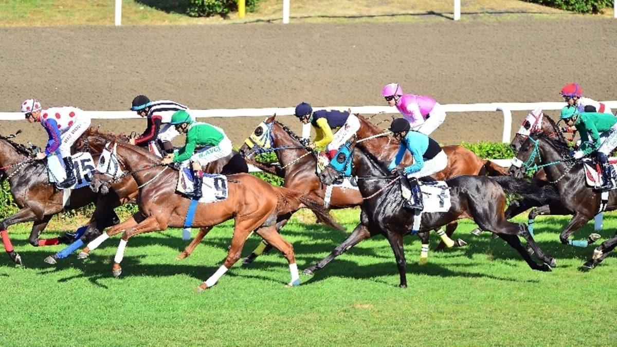 At yarışlarında Gazi Koşusu heyecanı