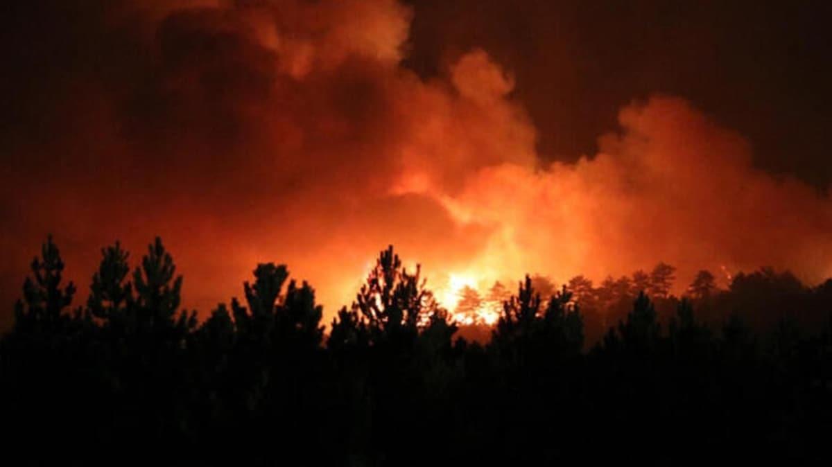 Denizli'deki yangın tamamen kontrol altına alındı