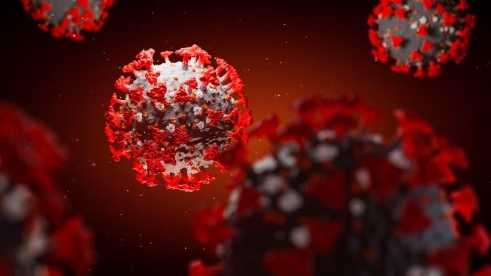 Koronavirüsle mücadelede önemli buluş: SARS-Cov-2'yi etkisiz hale getiren antikor bulundu