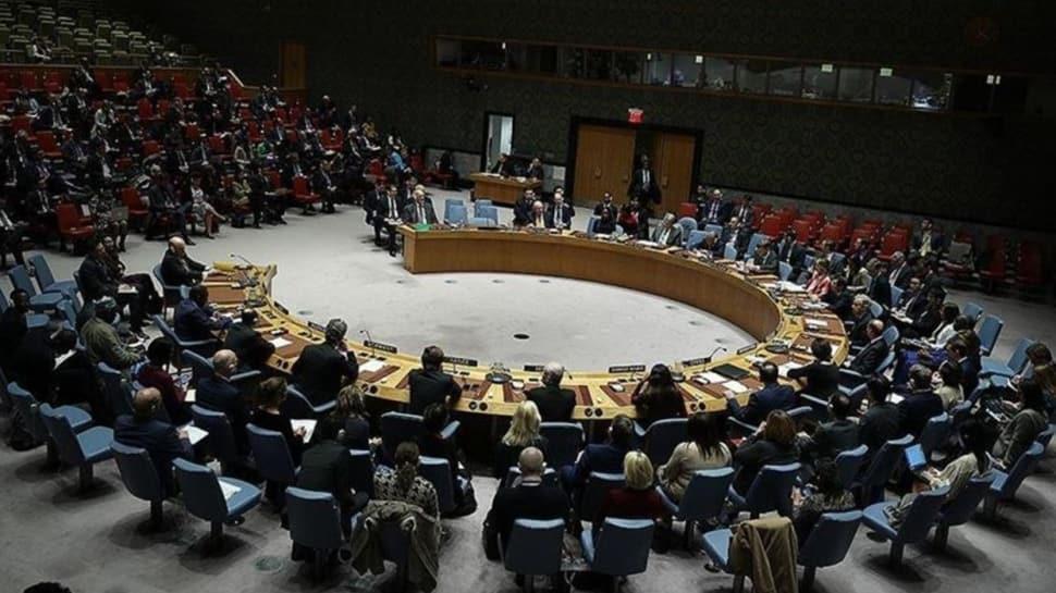 Libya'da paralı askerlerin çekilmesi ve silah ambargosu karar kabul edildi