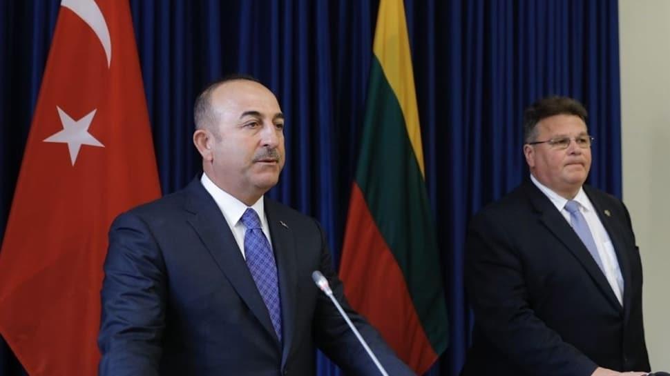 Dışişleri Bakanı Çavuşoğlu: Litvanya ile yakın işbirliği ve koordinasyon için kararlılıkla çaba göstermeye devam edeceğiz