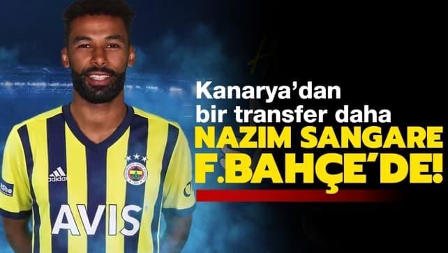 Nazım Sangare, Fenerbahçe'de