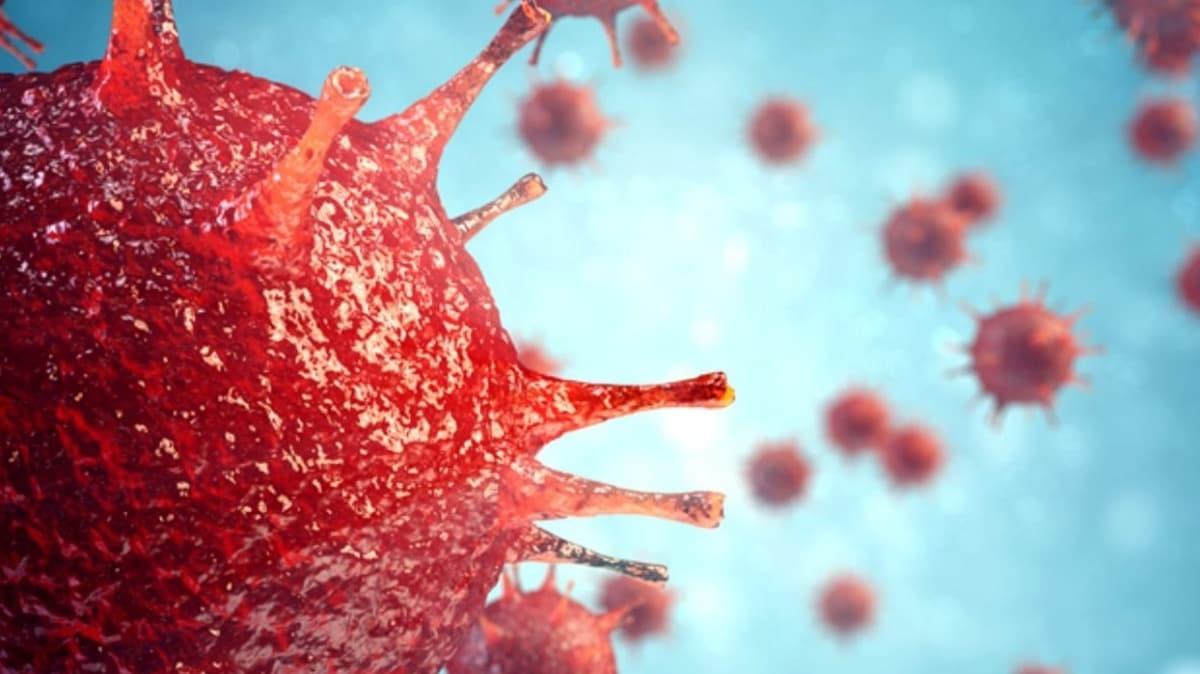 Daha fazla bulaşıcı, daha az ölümcül: Fransa'da yedi farklı koronavirüs mutasyonu ortaya çıktı
